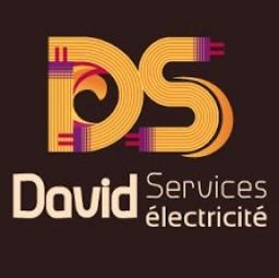 logo electriciens DAVID SERVICES Paris 10e arrondissement