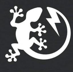 logo electriciens LEZELEC Saint Pierre En Faucigny